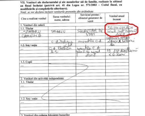 Fragment din declaraţia de avere a fostului purtător de cuvânt al Guvernului