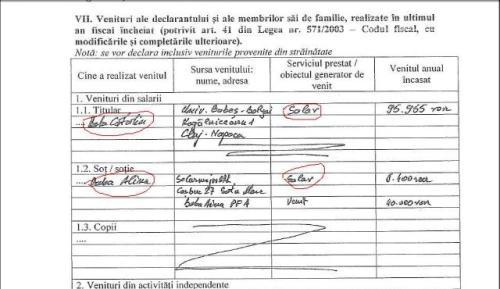 Salar-ul din declaraţia de avere a şefului Cancelariei premierului, Baba Cătălin, decan al Facultăţii Babeş Bolyai